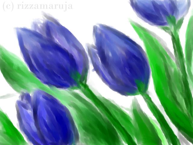 tulips.bmp
