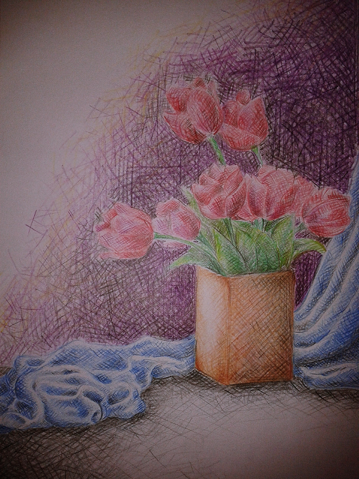 cross hatching colored pencil writer and illustrator